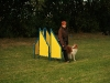 2008-09-16 - Obedience