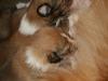 2009-12-14 - A-Wurf, 18 Tag (23)