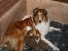 2009-12-14 - A-Wurf, 18 Tag (8)
