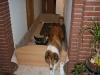 2009-12-24 - Heiligabend - 23