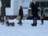 2010-01-04 - A-Wurf Gini & Belana, 39.Tag - 26