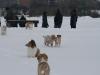2010-02-14 Schneespaziergang - 107