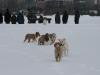 2010-02-14 Schneespaziergang - 110