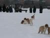 2010-02-14 Schneespaziergang - 116