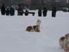 2010-02-14 Schneespaziergang - 118
