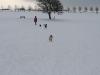 2010-02-14 Schneespaziergang - 136