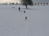 2010-02-14 Schneespaziergang - 137