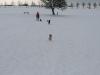 2010-02-14 Schneespaziergang - 138
