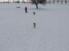 2010-02-14 Schneespaziergang - 139