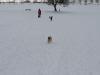 2010-02-14 Schneespaziergang - 140