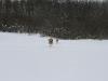 2010-02-14 Schneespaziergang - 27