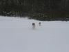 2010-02-14 Schneespaziergang - 28