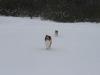 2010-02-14 Schneespaziergang - 30