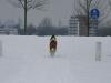2010-02-14 Schneespaziergang - 37
