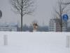 2010-02-14 Schneespaziergang - 38
