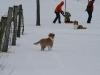 2010-02-14 Schneespaziergang - 65