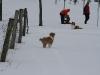 2010-02-14 Schneespaziergang - 66