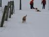 2010-02-14 Schneespaziergang - 68