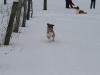 2010-02-14 Schneespaziergang - 69