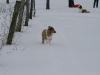 2010-02-14 Schneespaziergang - 70
