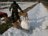 2010-02-20 Bolzum - 142