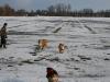 2010-02-20 Bolzum - 74