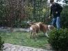 2010-04-19 Besuch Anton - 40