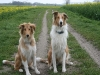 2010-04-27 Schnappschüsse - 24
