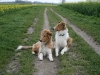 2010-04-27 Schnappschüsse - 32