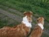 2010-04-27 Schnappschüsse - 47