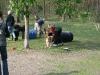 2010-04-28 Anouk - 17