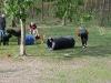 2010-04-28 Anouk - 19