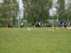 THS Bockenem - 8