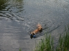 2010-06-06 Schwimmen - 114