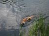 2010-06-06 Schwimmen - 116
