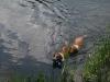 2010-06-06 Schwimmen - 117