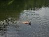 2010-06-06 Schwimmen - 133