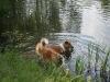2010-06-06 Schwimmen - 30