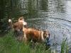 2010-06-06 Schwimmen - 31