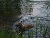2010-06-06 Schwimmen - 43
