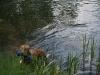 2010-06-06 Schwimmen - 44