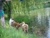 2010-06-06 Schwimmen - 47