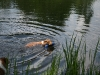 2010-06-06 Schwimmen - 52