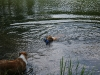 2010-06-06 Schwimmen - 69