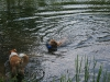 2010-06-06 Schwimmen - 70
