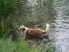 2010-06-06 Schwimmen - 79