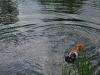 2010-06-06 Schwimmen - 86