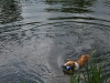 2010-06-06 Schwimmen - 87