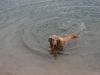 2010-07-04  Schwimmen - 24