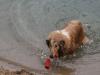 2010-07-04  Schwimmen - 25